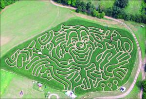 kukuruznyj-labirint