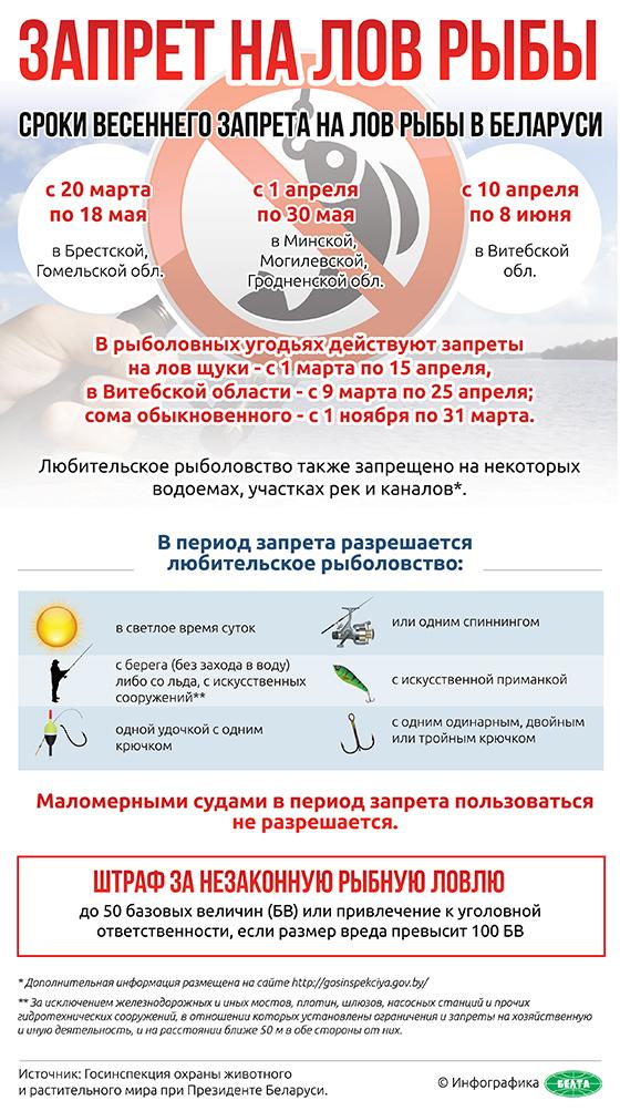 срок на запрет ловли рыбы в беларуси