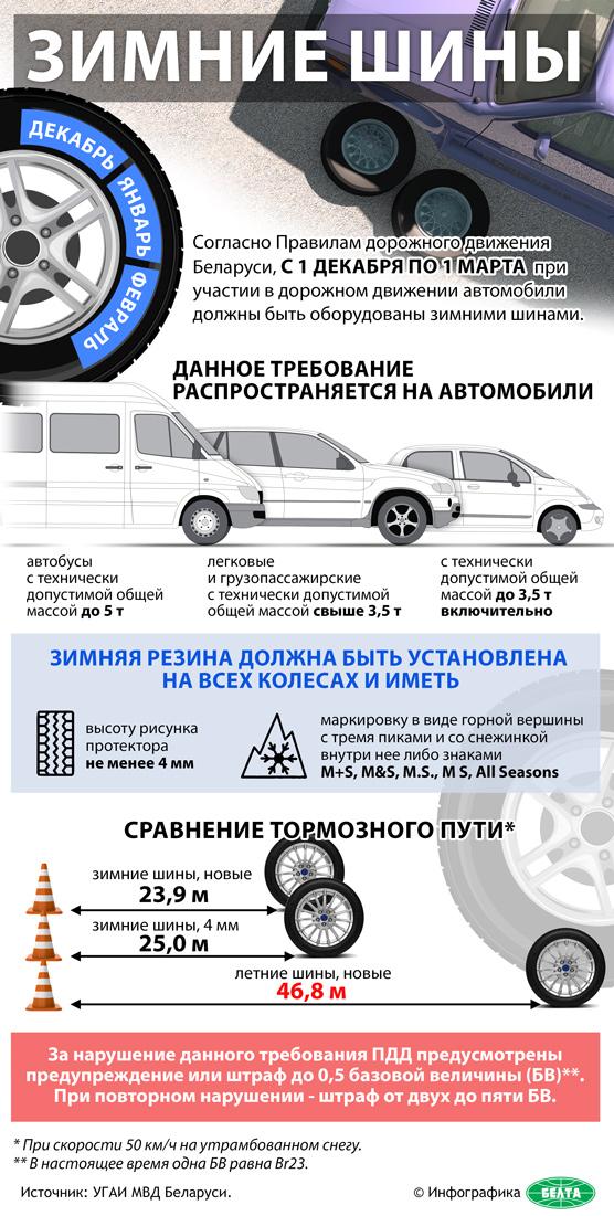 Инфографика-шины
