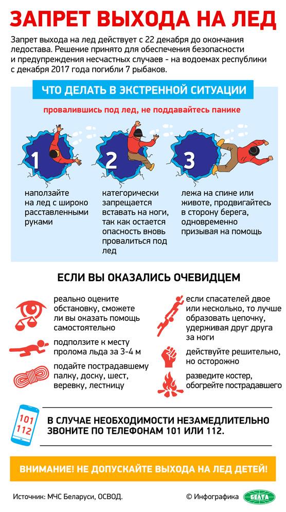 Инфографика-лед