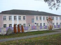 Боровицкая школа